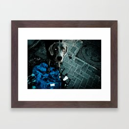 Jimmy RIP Framed Art Print