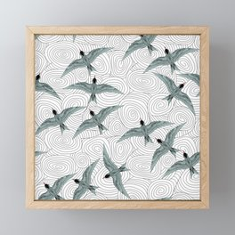 Arctic Terns Framed Mini Art Print