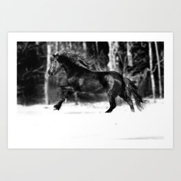 Wynske in Winter Art Print