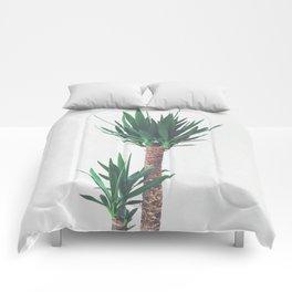Yucca II Comforters