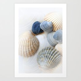 Just Sea Shells Art Print