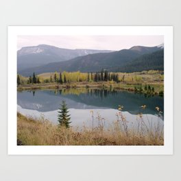 Reflections on Nature Art Print