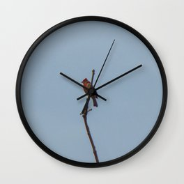 Fine day for a Finch Wall Clock