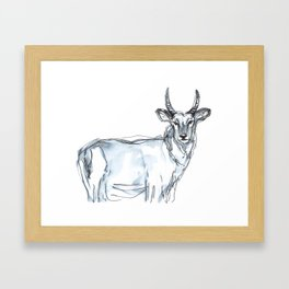 Gazelle, watercolor Framed Art Print
