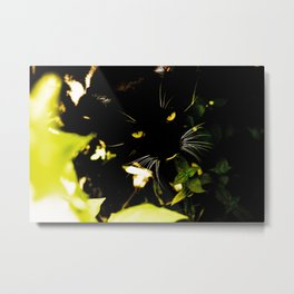 Cat hidden in the bushes  Metal Print