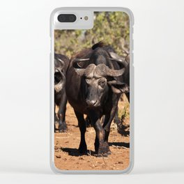 Cape Buffalo. Clear iPhone Case
