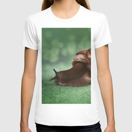Garden snail on a green leaf T-shirt