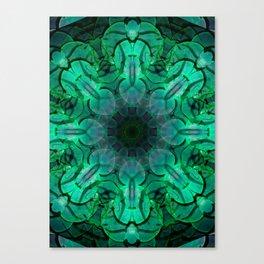 Suculents Canvas Print
