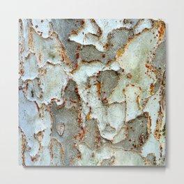 Sycamore Tree Bark Pattern #2 Photograph Metal Print