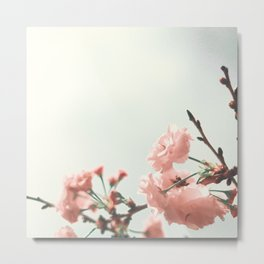 Tiny blossoms Metal Print