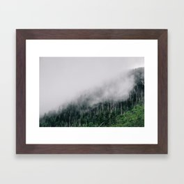 Misty Great Smoky National Park  Framed Art Print