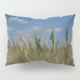 Grains Pillow Sham