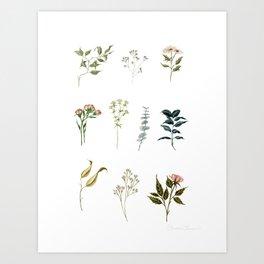 Delicate Floral Pieces Art Print
