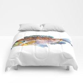 Bluegill Comforters