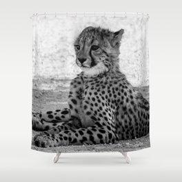 B&W Cheetah Cub 3 Shower Curtain