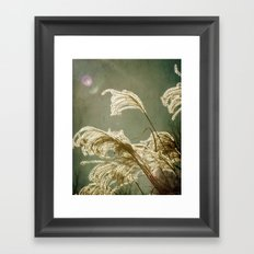 Soaking Up The Sun Framed Art Print