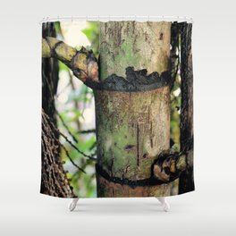 Palm Trunk Shower Curtain