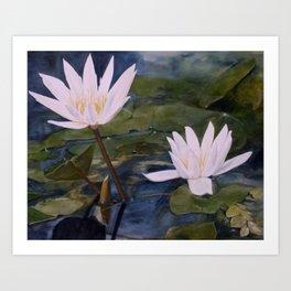 Watercolor Flower Water Lily Landscape Nature Art Print