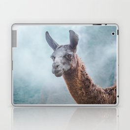 Curious, wise looking guanacao / llama on a blue misty morning in the Andes mountains, Peru Laptop & iPad Skin