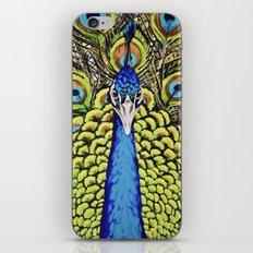 Peacock 3 iPhone & iPod Skin