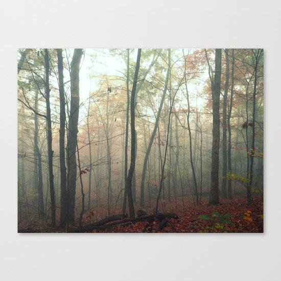 Wandering in a Fog Canvas Print