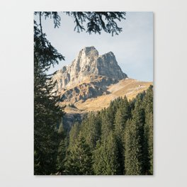 Mountain and Woods Canvas Print