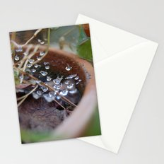water's web Stationery Cards