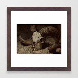 Ram Skull Framed Art Print
