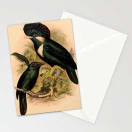Helmeted Myna, Moluccan Starling1 Stationery Cards