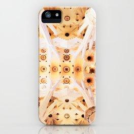 Gaudi Patterns iPhone Case