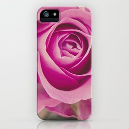 Close up of a rose iPhone Case
