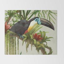 Channel- billed toucan vintage illustration. Throw Blanket