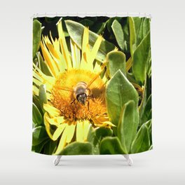 A bee eager to fly Shower Curtain