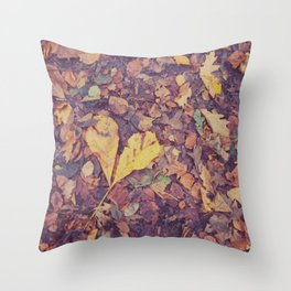 Love in Autumn Time Throw Pillow