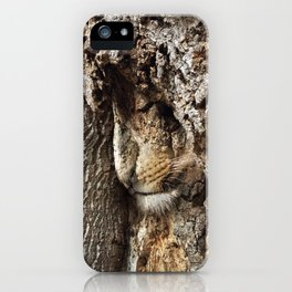 King of the Forest at Rest iPhone Case