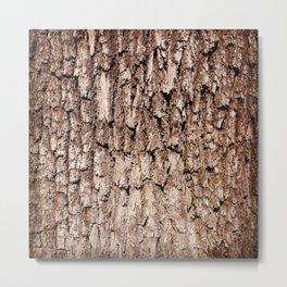 Oak Bark Texture Metal Print
