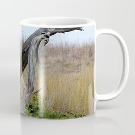 Coastal Driftwood Coffee Mug