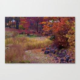 Fall Foliage in Nikko, Japan Canvas Print