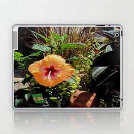 Arizona Sunshine  Laptop & iPad Skin