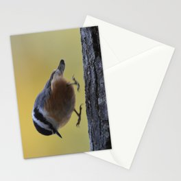 Red Breasted Nuthatch - Hopping Mad Stationery Cards