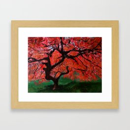 Japanese Maple Tree Acrylics On Canvas Board Framed Art Print