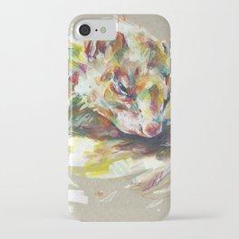 Ferret IV iPhone Case