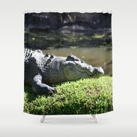 crocodile Shower Curtains featuring Crocodile by Georgia