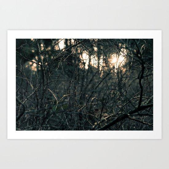 Urswamp Art Print