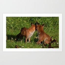 Mr & Mrs Fox (Back) Art Print