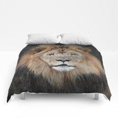 Male Lion Portrait Comforters