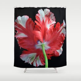 Red Parrot Tulip Shower Curtain