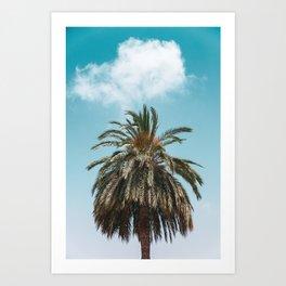 Palm Trees in Barcelona, Digital Print, Spain, Summer Wallpaper, Nature Photography, Printable Photo Art Print