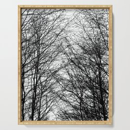 Tree Silhouette Series 8 Serving Tray