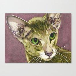 Daphnie Canvas Print